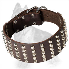 Extra Wide Leather German Shepherd Collar Decorated with Nickel Plated Cones