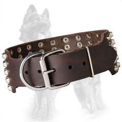 Wide Leather German Shepherd Collar with Riveted Nickel Plated Hardware