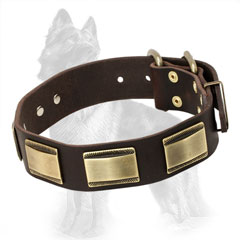 Leather German Shepherd Collar with Decorative Brass Plates