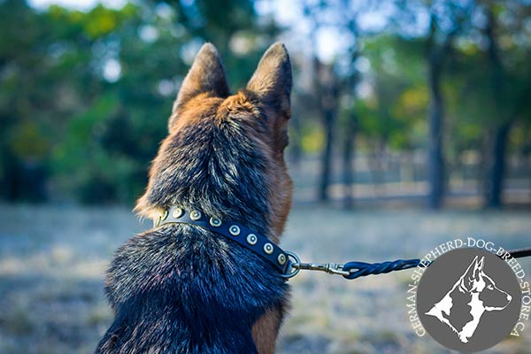Thin Leather German Shepherd Collar with Dotted Studs