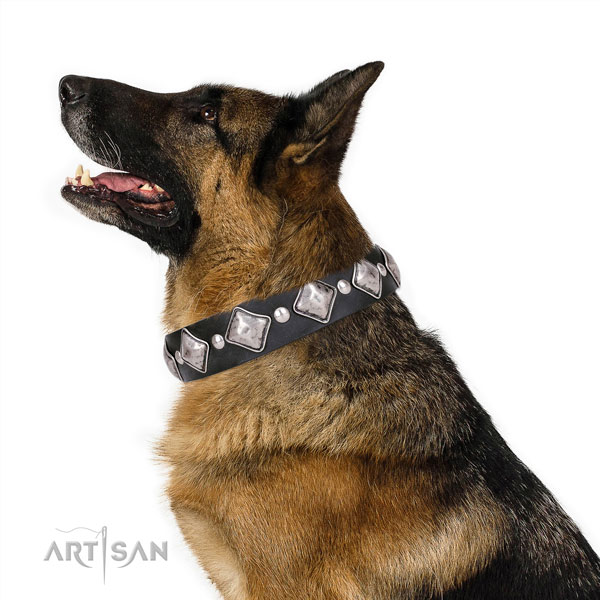 Easy wearing studded dog collar of strong genuine leather