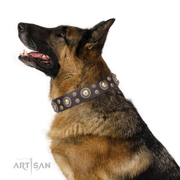 Everyday use decorated dog collar of reliable natural leather