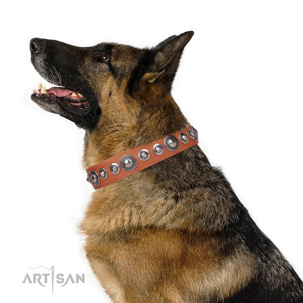Designer adorned natural leather dog collar for daily use