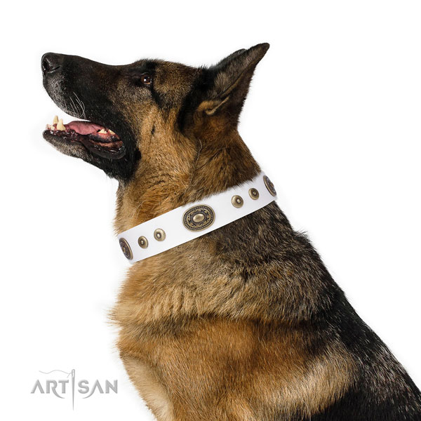 Designer adorned natural leather dog collar for everyday walking