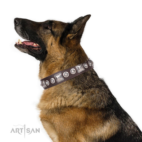 Stylish embellished genuine leather dog collar for everyday use