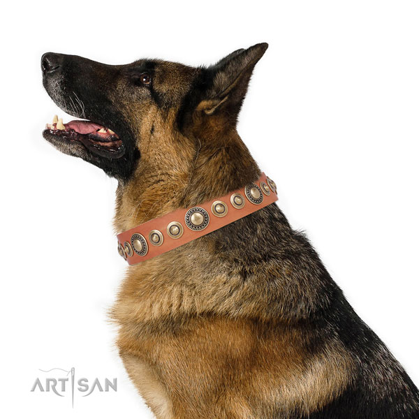 Reliable buckle and D-ring on leather dog collar for daily walking