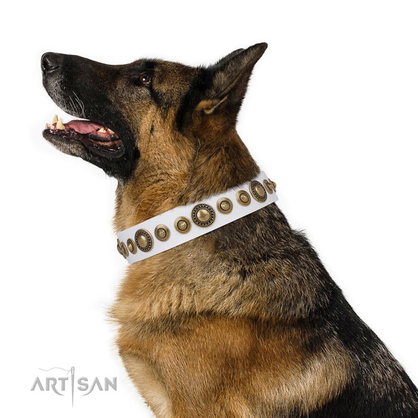 Rust-proof buckle and D-ring on full grain leather dog collar for everyday walking