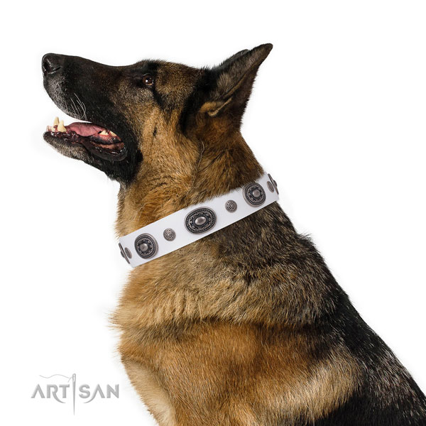 Leather dog collar with durable buckle and D-ring for stylish walking