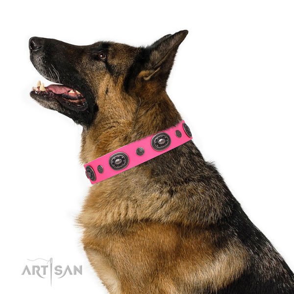 Leather dog collar with rust resistant buckle and D-ring for handy use