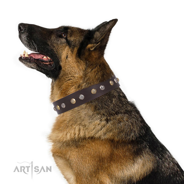 Natural leather dog collar with corrosion resistant buckle and D-ring for daily use