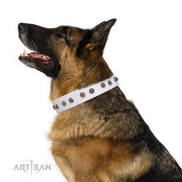 Genuine leather dog collar with rust resistant buckle and D-ring for everyday walking