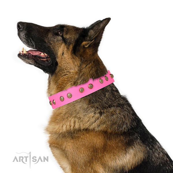 Designer decorations on easy wearing genuine leather dog collar