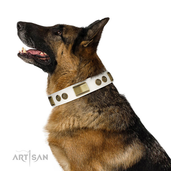 High quality comfy wearing dog collar of natural leather
