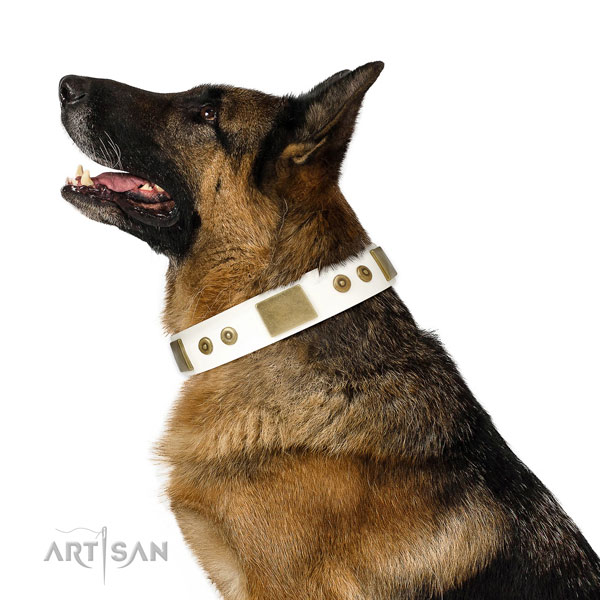 Quality daily use dog collar of leather