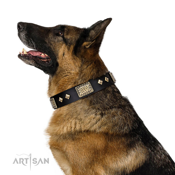 Top rate daily use dog collar of leather