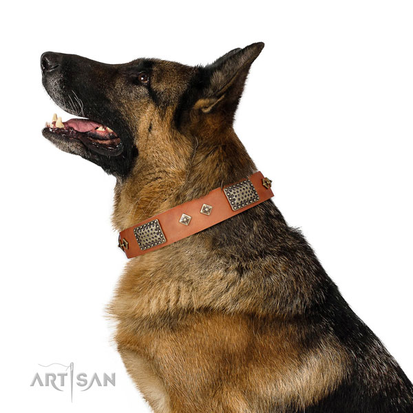 Top rate everyday use dog collar of natural leather