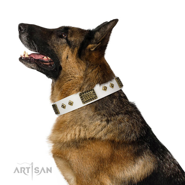 Handy use dog collar of natural leather with significant embellishments