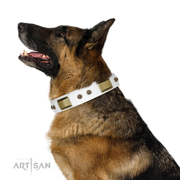 Basic training dog collar of leather with unusual decorations