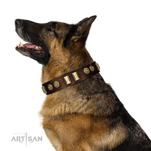 Corrosion resistant hardware on full grain leather dog collar for everyday use