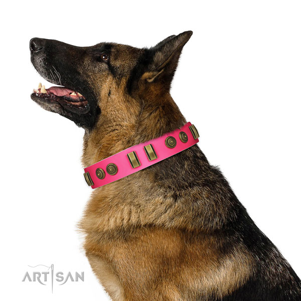 Stylish walking dog collar of natural leather with designer adornments