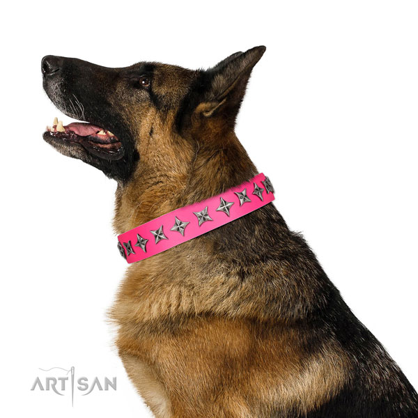Best quality full grain genuine leather dog collar with fashionable embellishments