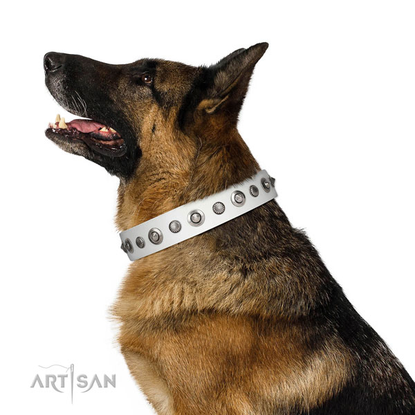 Leather collar with corrosion proof buckle for your lovely canine