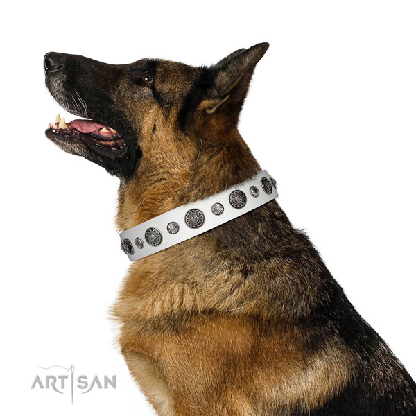 Unusual Full grain natural leather dog collar with corrosion resistant hardware