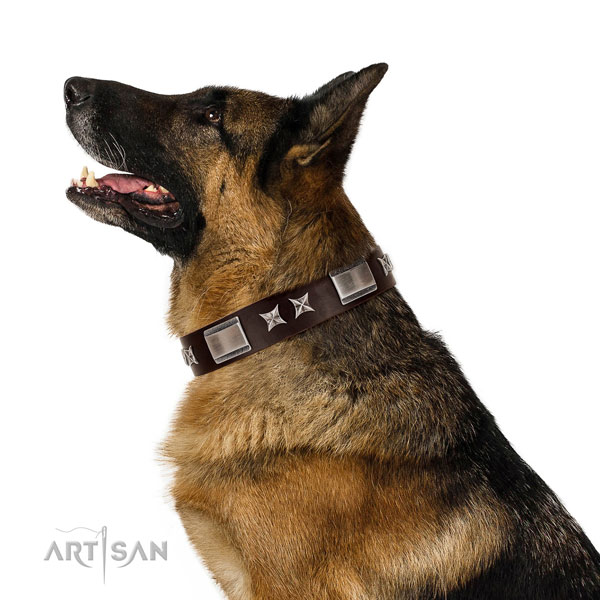 Unusual collar of leather for your attractive doggie