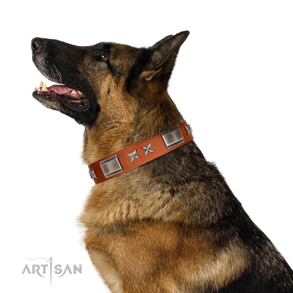 Walking quality full grain leather dog collar with decorations