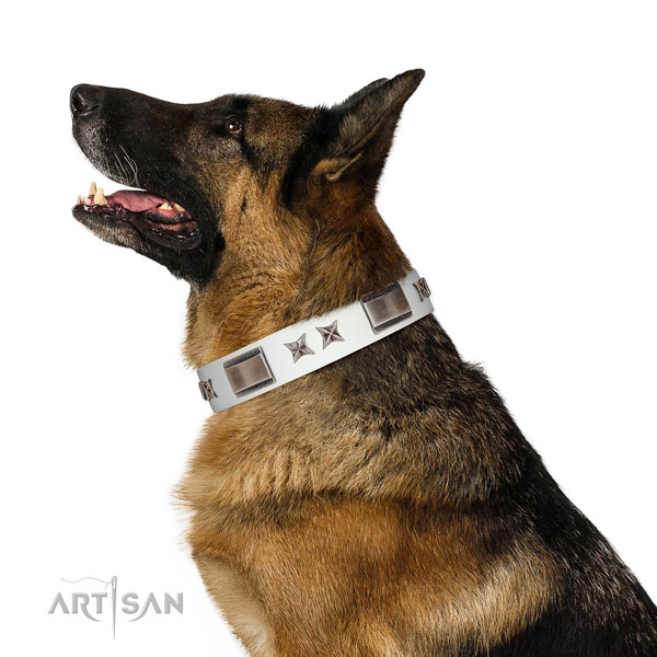 Exceptional collar of natural leather for your lovely pet
