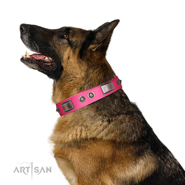 Trendy genuine leather dog collar with embellishments