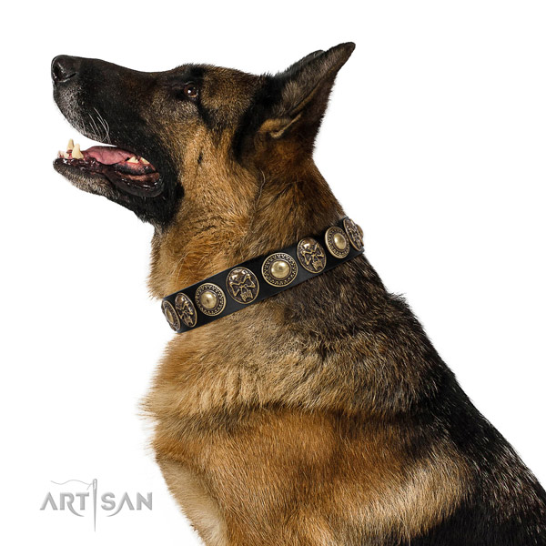 Adjustable genuine leather collar for your attractive pet