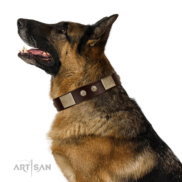 Rust-proof traditional buckle on genuine leather dog collar for easy wearing