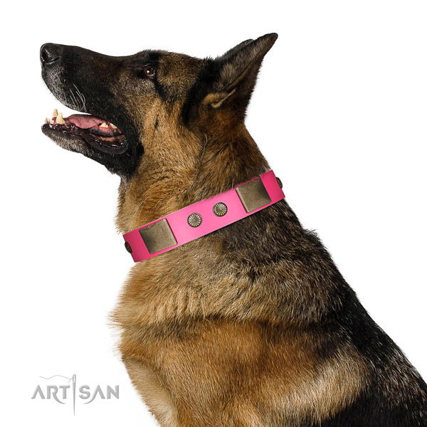 Reliable fittings on genuine leather dog collar for comfortable wearing