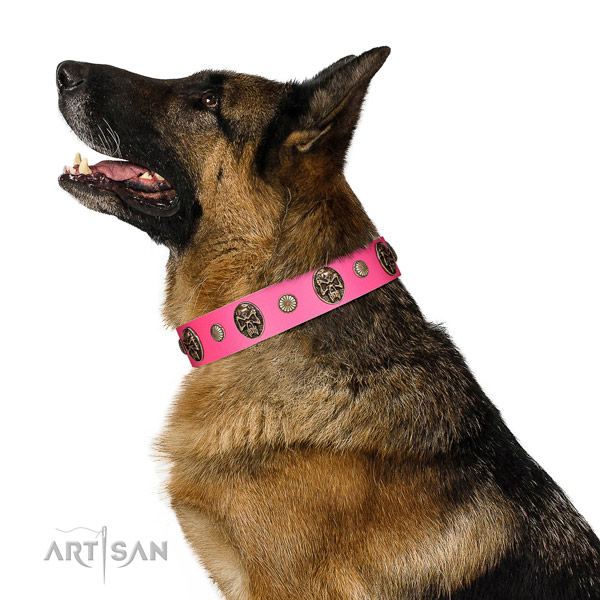 Durable traditional buckle on natural genuine leather dog collar for everyday walking