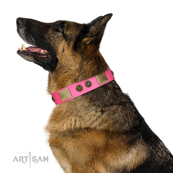 Embellished dog collar handmade for your attractive dog