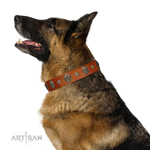 Easy wearing dog collar of leather with trendy decorations