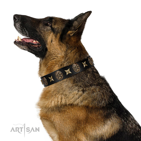 Easy wearing dog collar of natural leather with trendy adornments