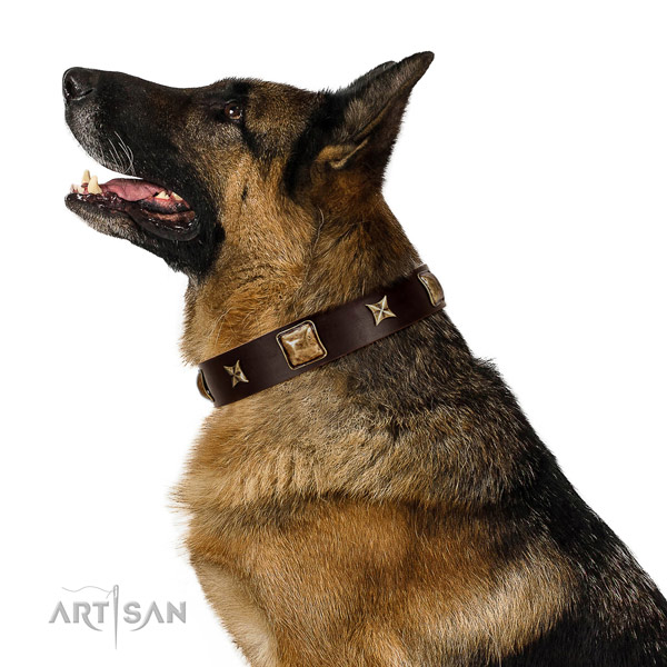 Handcrafted natural leather dog collar with adornments