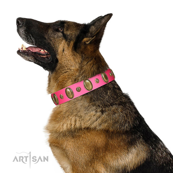 Stylish walking top rate full grain leather dog collar with adornments