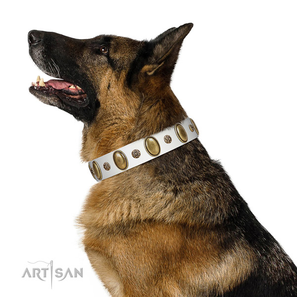 Comfortable wearing quality full grain leather dog collar with adornments