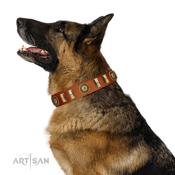 Designer full grain genuine leather dog collar with strong traditional buckle