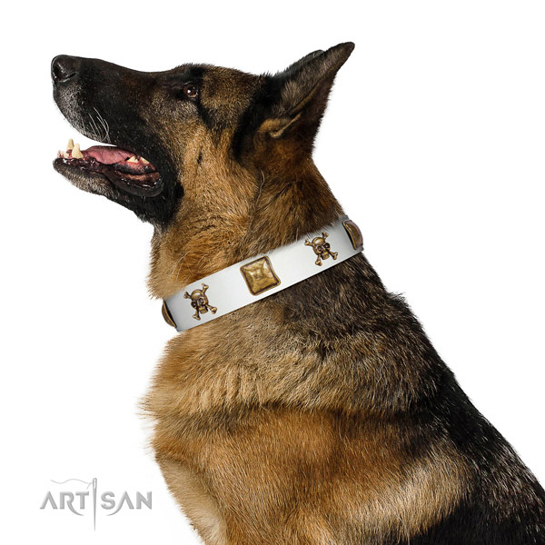 Everyday use genuine leather dog collar with embellishments