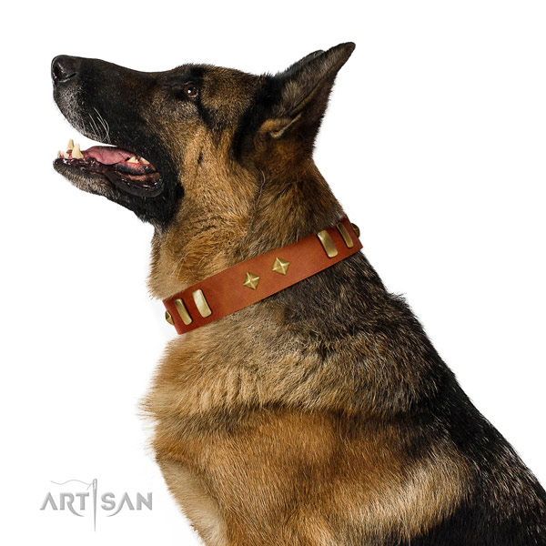 Handy use flexible natural leather dog collar with embellishments