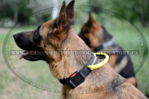 Nylon German Shepherd Collar with Easy Quick Release Buckle