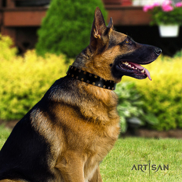 German Shepherd Dog stunning adorned full grain natural leather dog collar for handy use