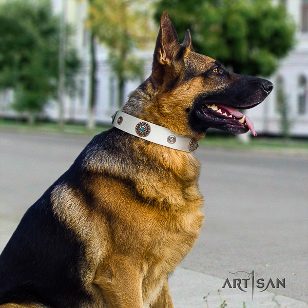 German-Shepherd Dog stylish adorned natural leather dog collar for fancy walking