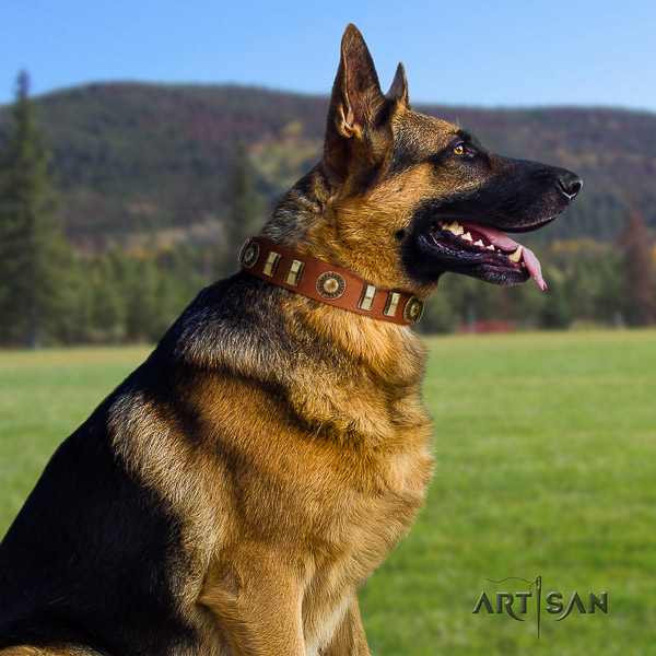 German Shepherd Dog unusual adorned full grain genuine leather dog collar for daily walking