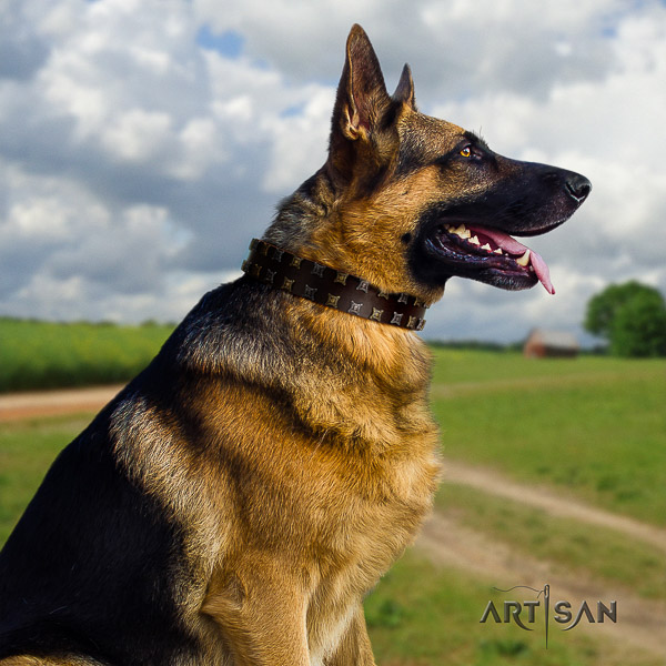 German Shepherd Dog significant adorned genuine leather dog collar for stylish walking