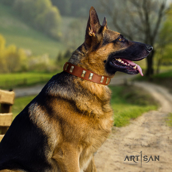 German Shepherd Dog exquisite adorned natural leather dog collar for comfortable wearing